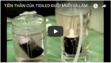 tien-than-cua-tidiled-duoi-muoi-va-lam-sach-khong-khi-bang-ozon
